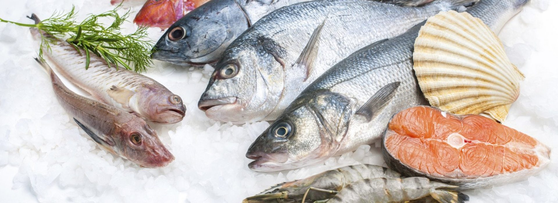 pescado-omega3